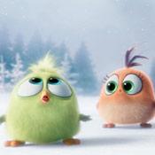 这么萌也是没谁了!《愤怒的小鸟》大电影再曝圣诞特辑