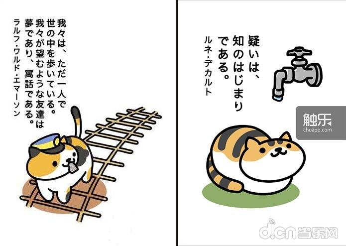 小猫喝水卡通图片